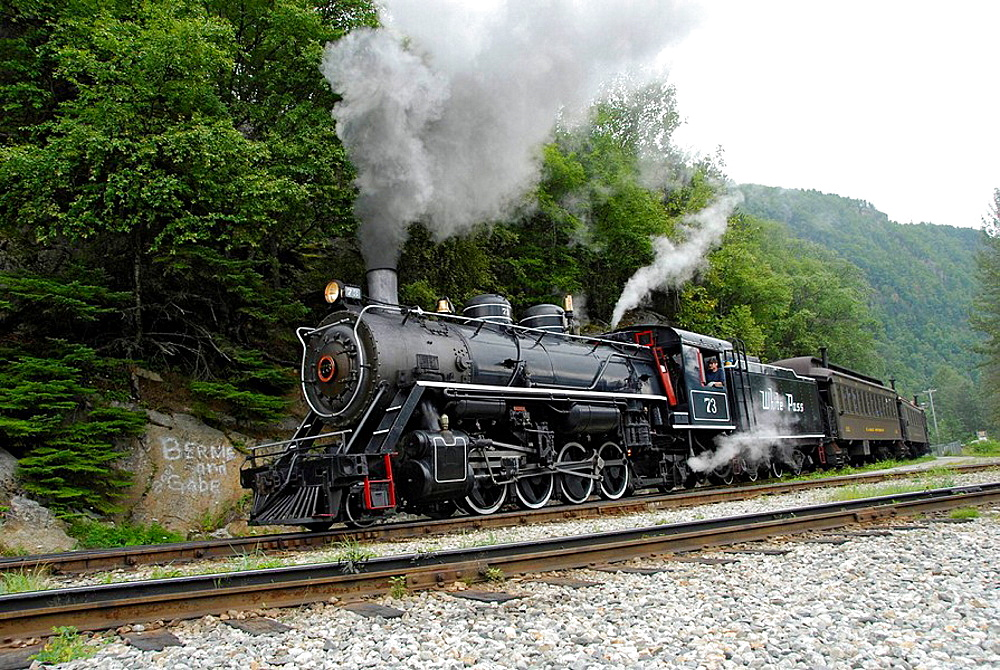 White Pass Yukon Route Railroad Skagway Alaska AK United States US Inside Passage travel vacation tour tourism tourists excursion concession steam locomotive train