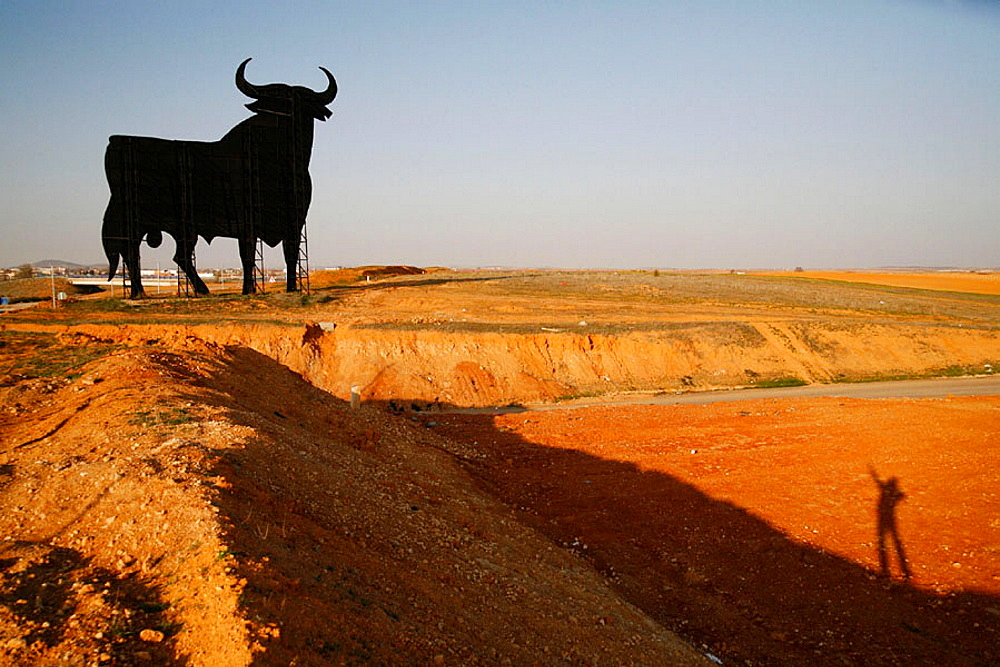 Bull, La Mancha, Spain