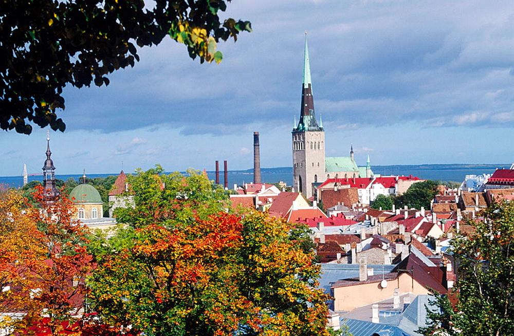 Tallin, Estonia. - 817-15576
