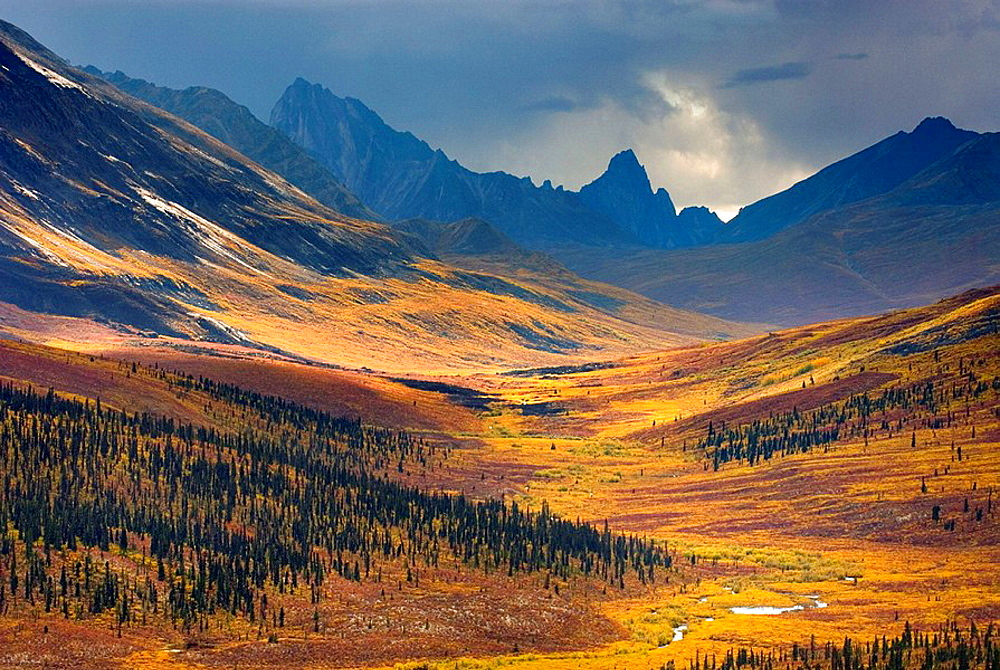 North klondike River Valley displaying vibrant colors of autumn foliage, Tombstone Territorial Park, Yukon, Canada - 817-156973