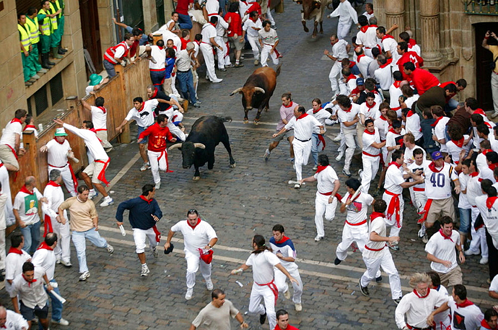 Running of the bulls, San Fermin, Pamplona, Navarre, Spain