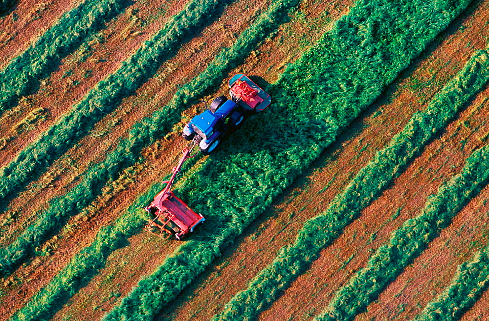 Tractor harvest hay, Aerial view, Narke, Sweden - 817-161736