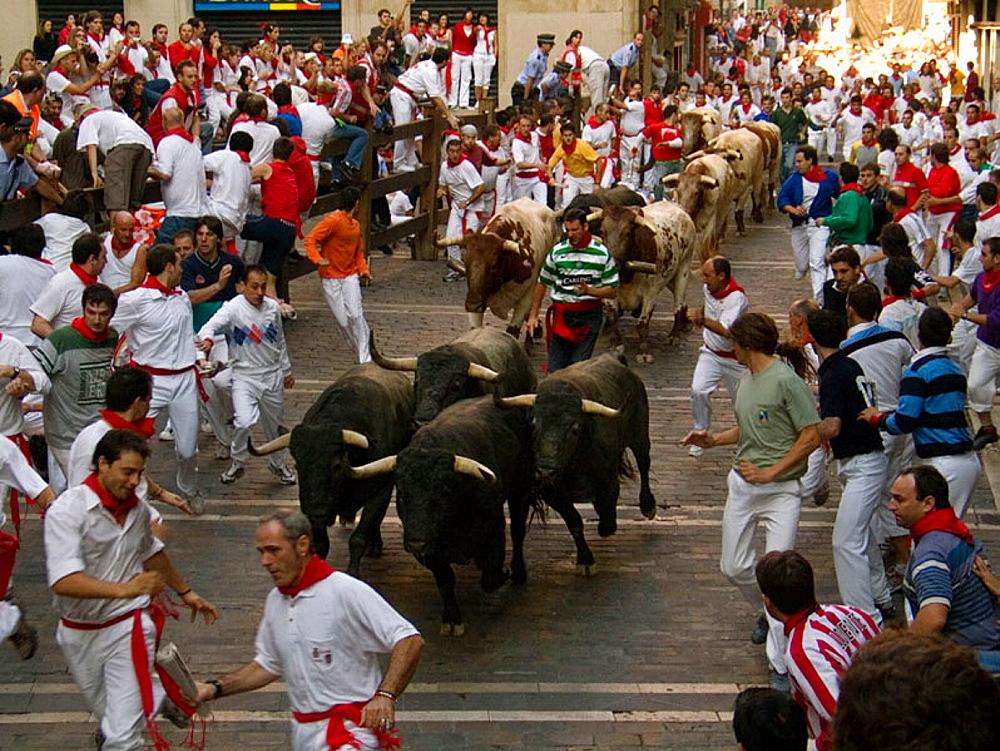 Encierro' running of the bulls, San Fermin Festival, Pamplona, Navarre, Spain