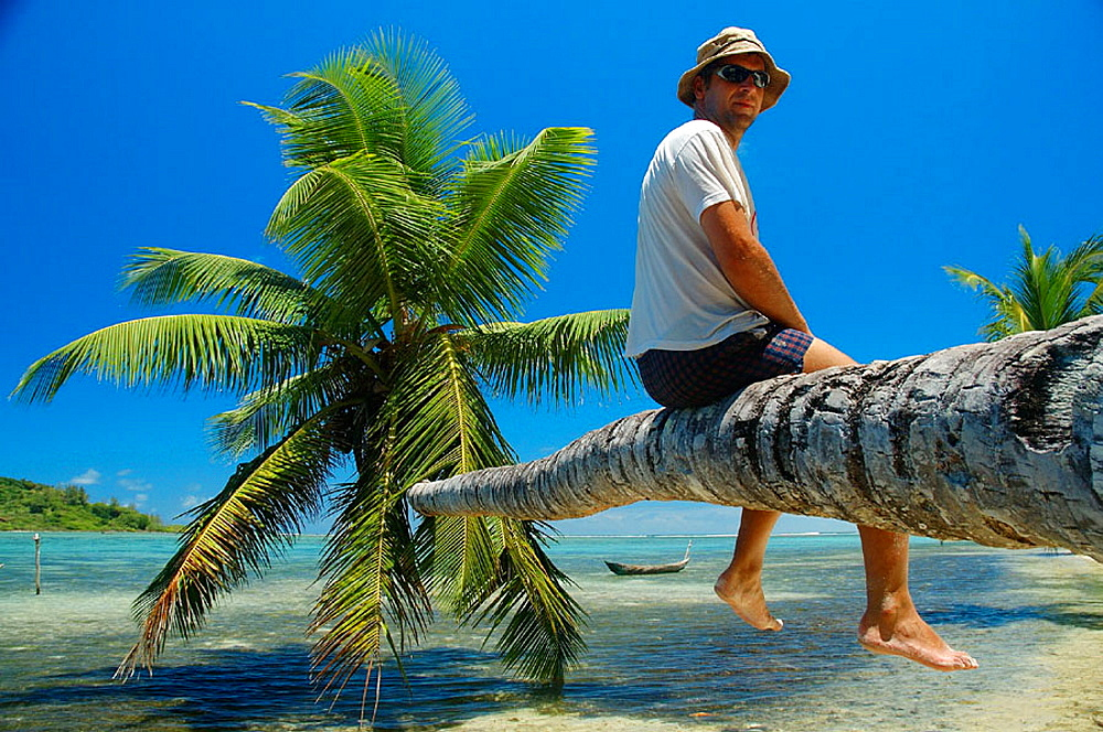 Tourist sitting on reclining palm tree, Ile Aux Nattes (Nosy Nato), Madagascar.