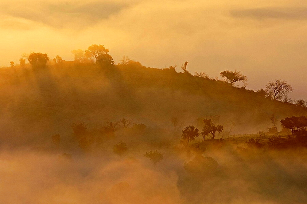 Landscape with fog near Guadiana River in Monsaraz, Alentejo, Portugal