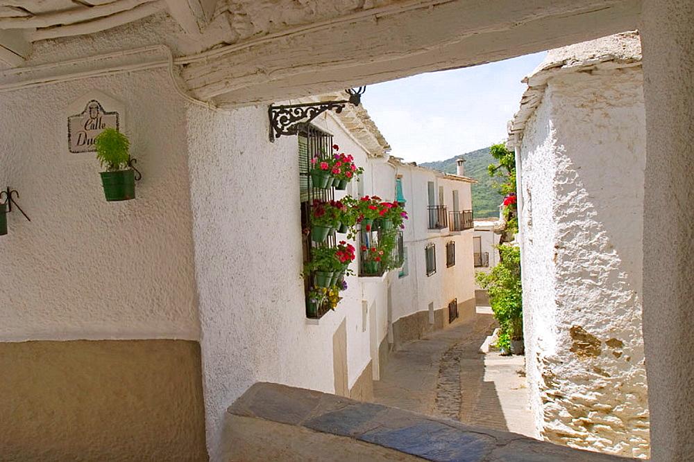 Capileira, Alpujarras, Sierra Nevada, Granada province, Andalusia, Spain
