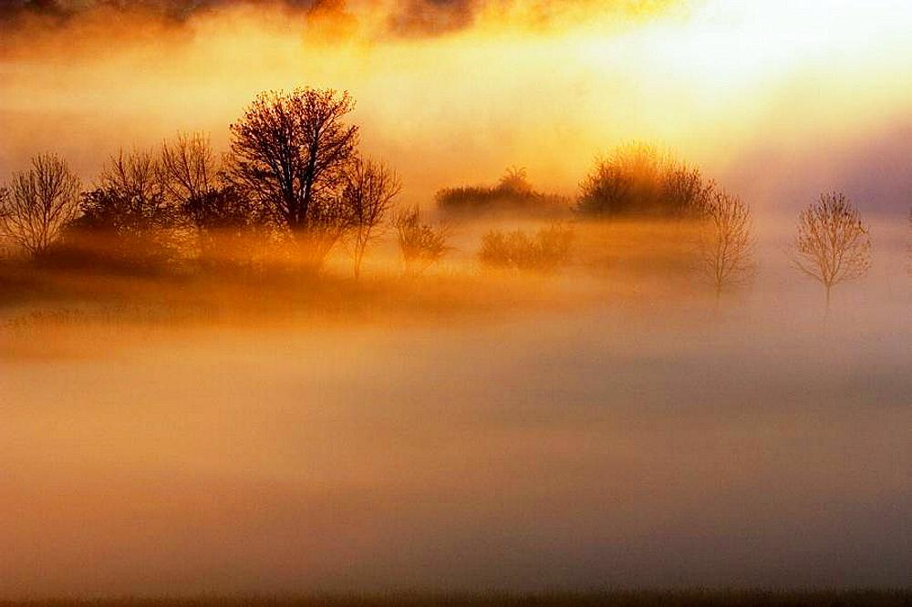 Sunrise in foggy morning at the woernitz (Wornitz) river, A big screen of fog at the woernitz river, Middle Franconia, Bavaria/Germany