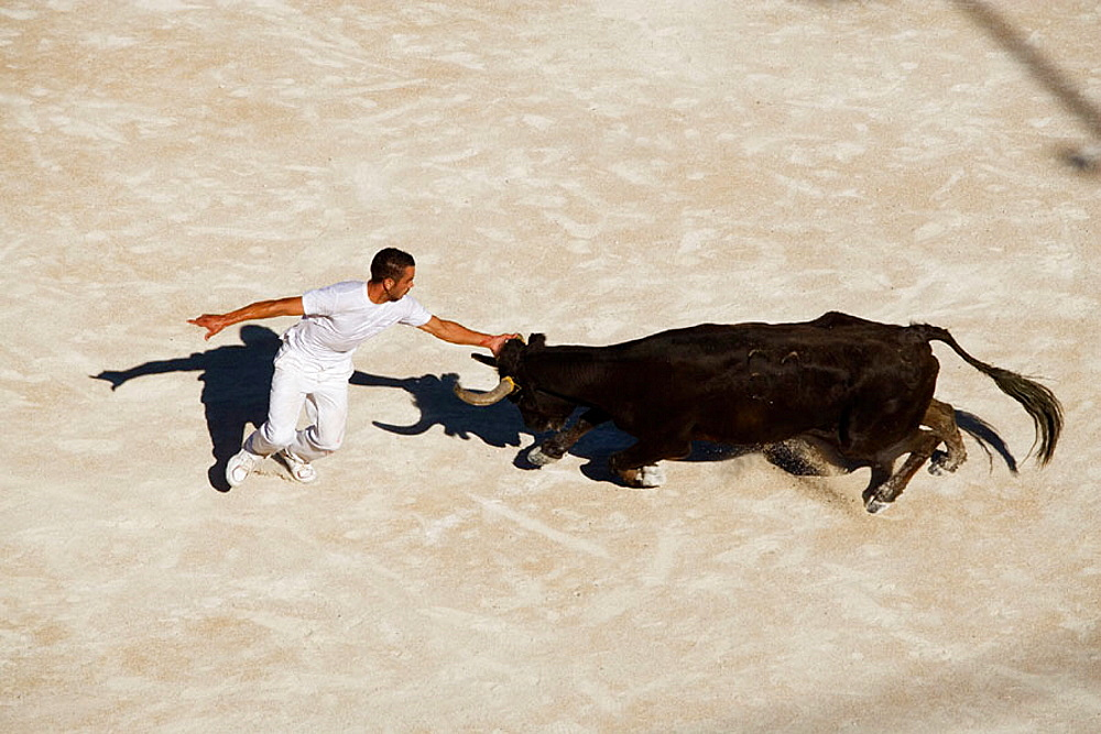 Fight between bull and man in the Arena of Arles, Provence, France
