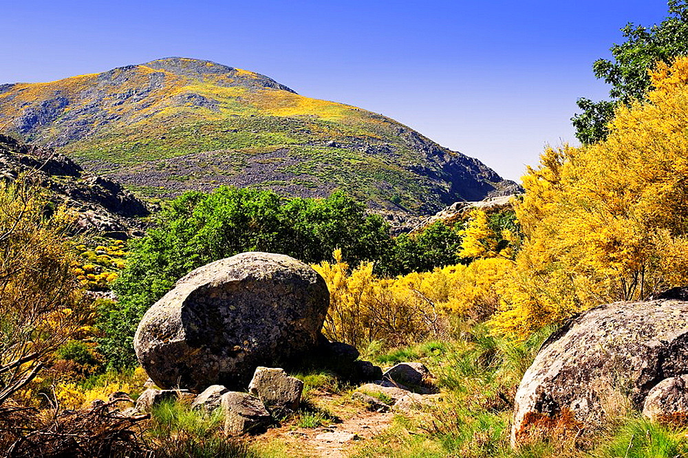 Cabezo de la Solana Sierra de Gredos Castilla Leon Espana