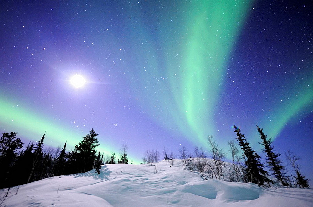 Northern lights (Aurora borealis), Northwest territories, 30 km, East of Yellowknife city, on the Great Slave Lake (temp: 42ª below zero), Canada (March 2008)