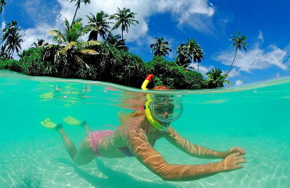 Snorkeling at palm-lined Beach, Maldives, Indian Ocean, Meemu Atoll