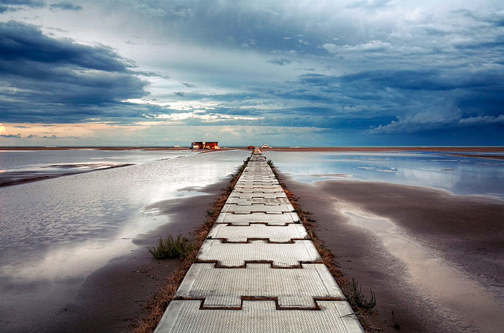 Eucaliptus beach, Delta del Ebro, Tarragona province, Catalonia, Spain