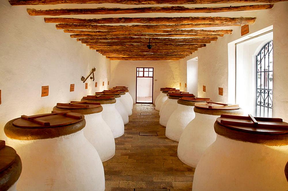 Olive oil, Nunez de Prado, (c.b.), Baena, Cordoba province, Andalucia, Spain. - 817-190802