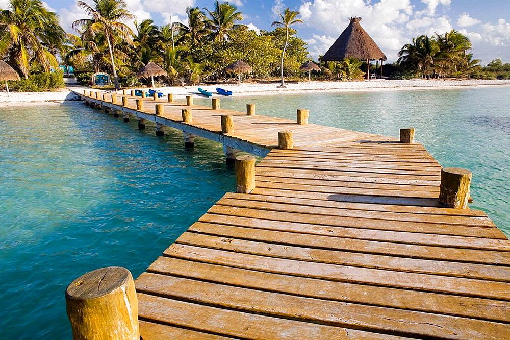 Isla Contoy, Cancun, Yucatan, Mexico - 817-192873