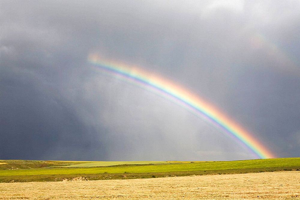 Steppe and cereal fields  Rainbow in a summer storm  Agricultural landscape in Monterrubio De La Armuna  Salamanca  Castille and Leon  Spain - 817-196236