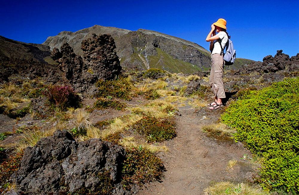 Tongariro Crossing and Tourist, Tongariro National Park, Taupo Region, North Island, New Zealand