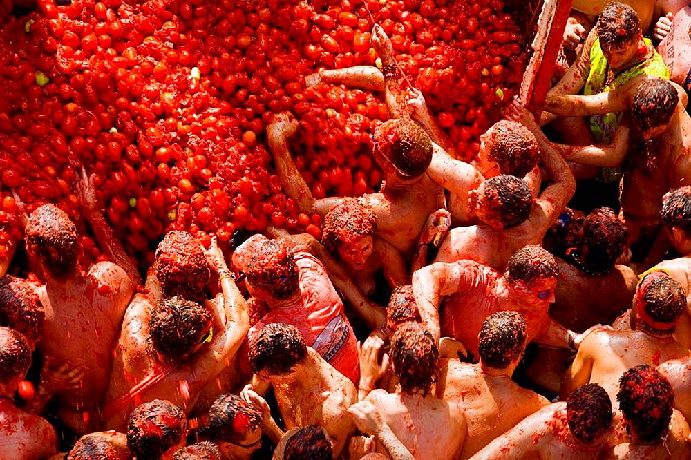 Tomatina food fight festival, Bunol, Valencia province, Comunidad Valenciana, Spain - 817-20078