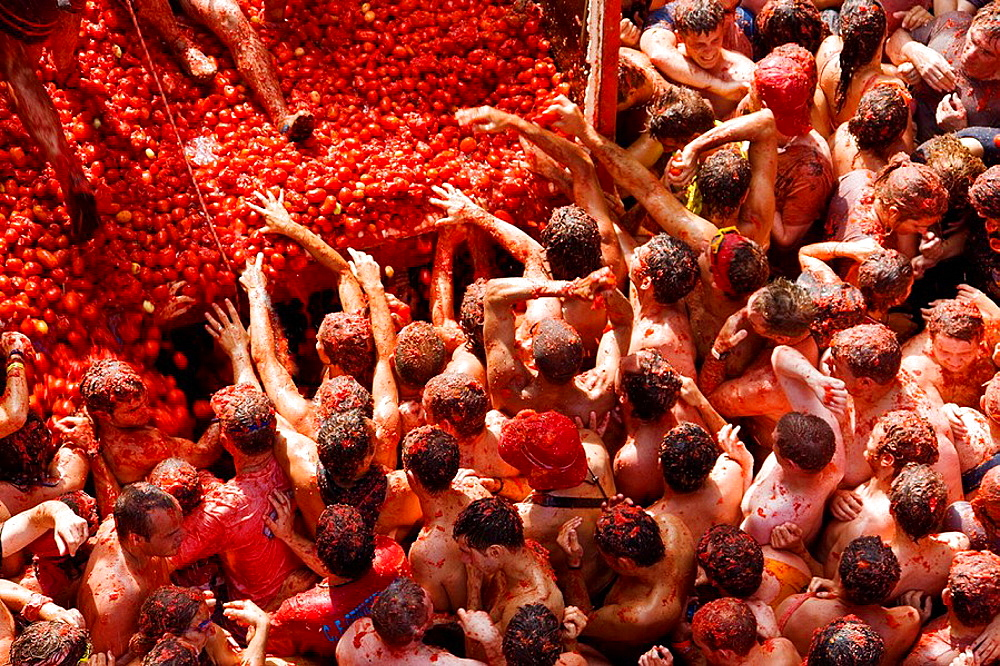 Image result for tomatina festival