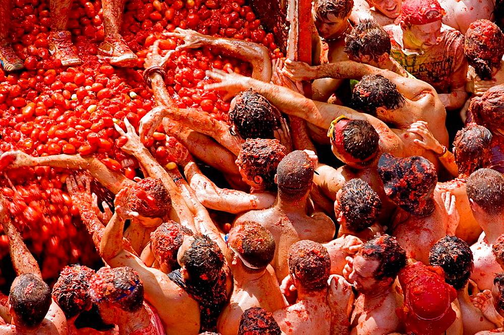 Spain, Valencia Region, Bunol City, Tomatina Festival (Tomato festival) - 817-20080