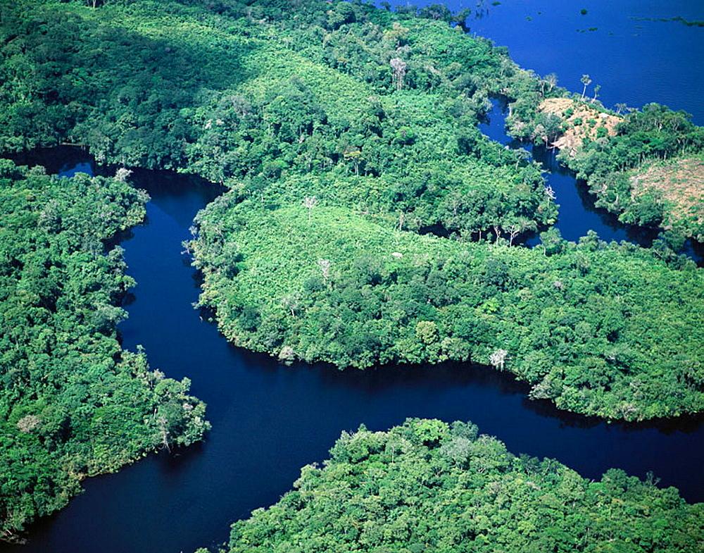 Amazon River, Rio Negro, Brazil - 817-20385
