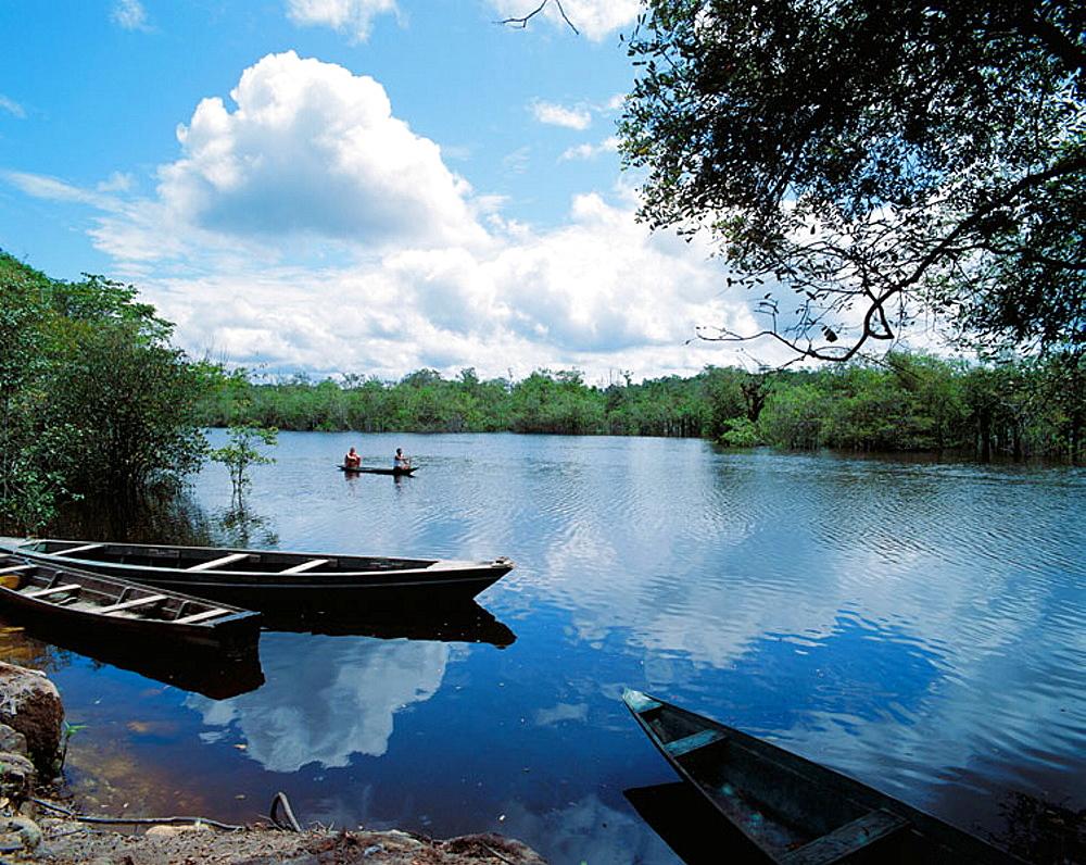 Rio Preto da Eva , Archipelago of Anavilhanas at Amazon River, near Manaus, Brazil - 817-20386