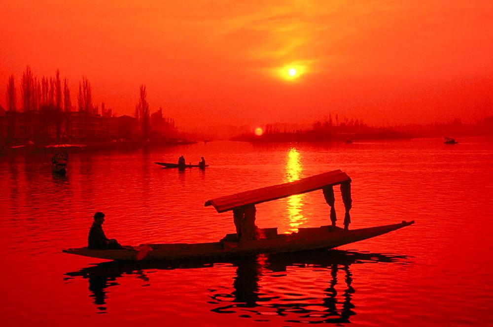 Activity in Dal Lake, Srinagar, Jammu and Kashmir, India - 817-21413