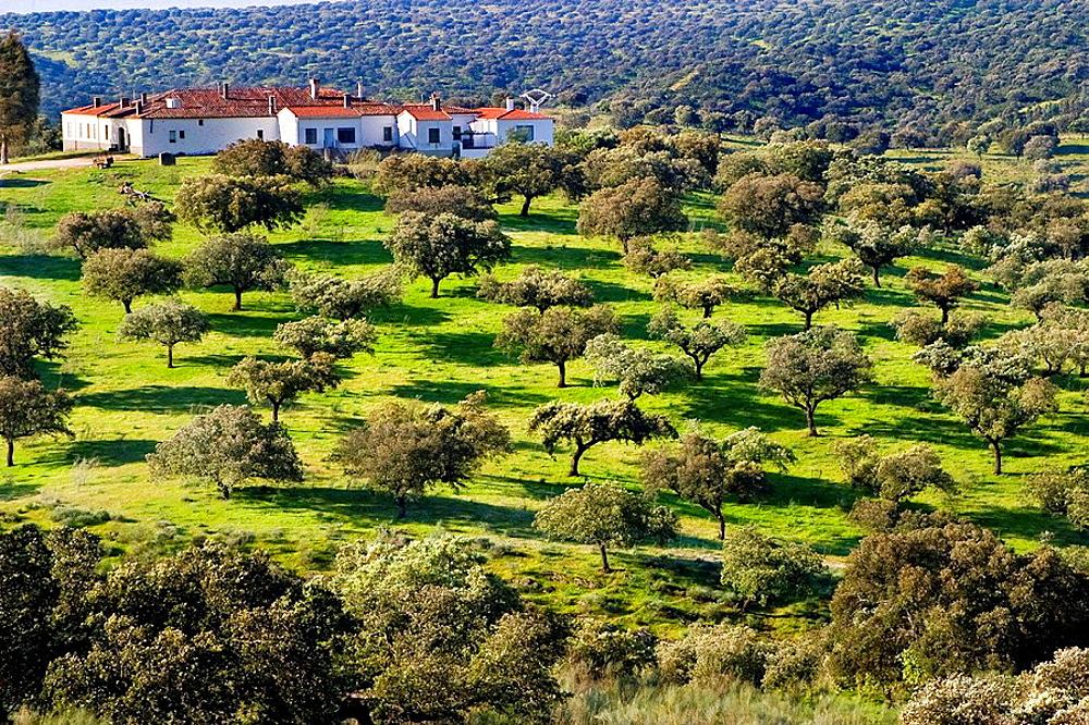 Las Corchuelas farm house, Monfrague National Park Caceres, Extremadura, Spain, Europe