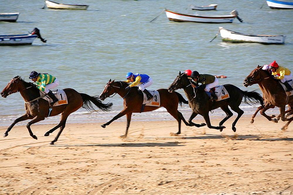 Horse race on beach, Sanlucar de Barrameda, Cadiz province, Andalucia, Spain