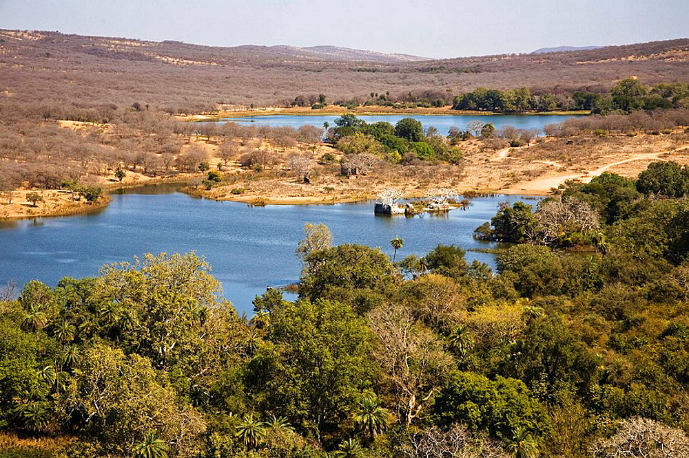 View of Padam Talao Lake from Ranthambhore Fort, Ranthambhore National Park, Rajasthan, India