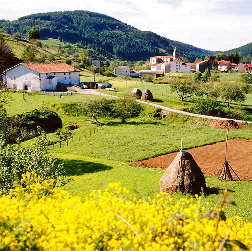 Bidegoian, Guipuzcoa, Euskadi, Spain