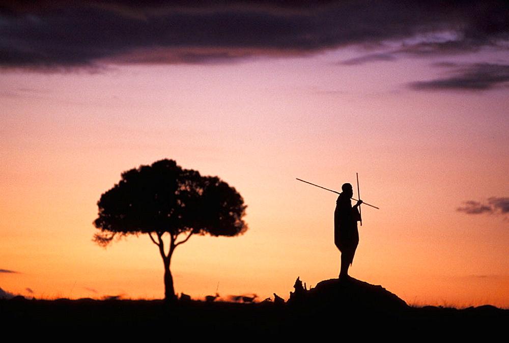 Maasai silhouette in African landscape, Masai Mara, Kenya - 817-242903