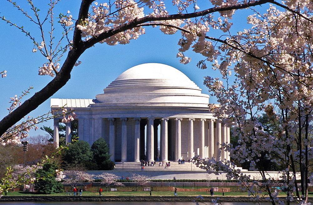 Jefferson Memorial during the spring cherry blossom fetival