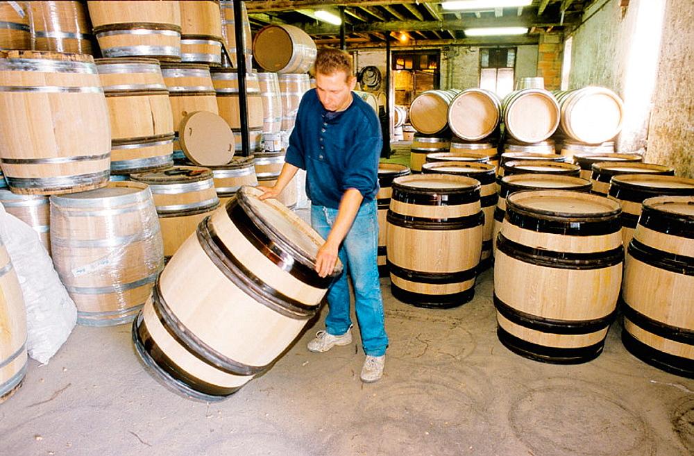 Oak casks factory Cooperage Billon, Beaune, Cote d'Or, Burgundy, France.