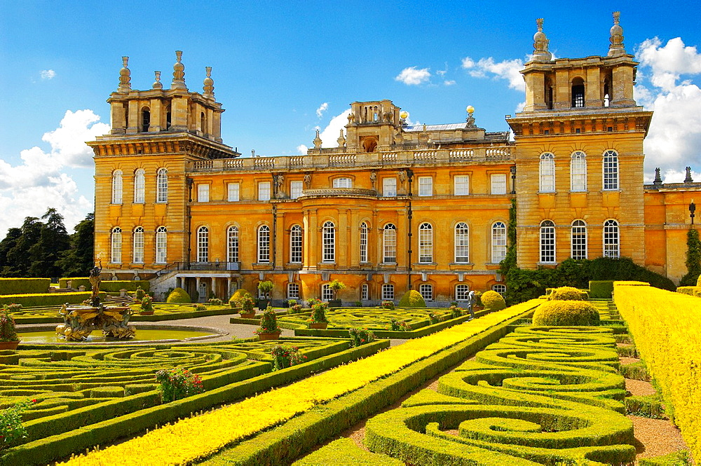 Blenheim Palace Italian Garden with topiary maize, England
