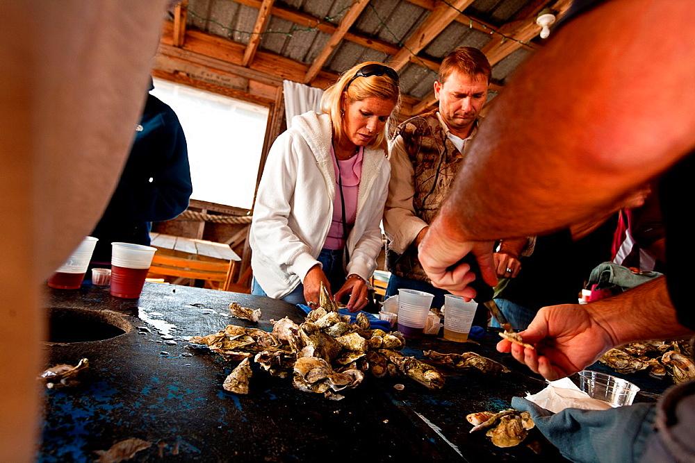 Oyster roast at Bowens Island restaurant along the Folly River, Charleston, SC
