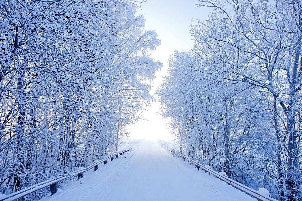Karlslund winter way, Sweden