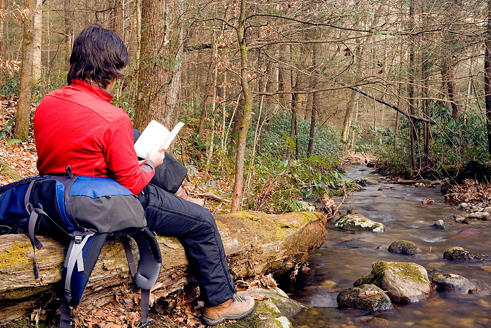 Backpacker reading by creek, Daniel Ridge, Pisgah National Forest, near Brevard, North Carolina, USA