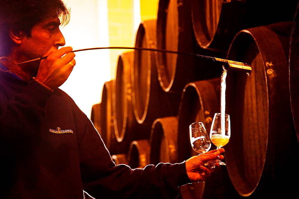 Bodegas Tradicion (winery, sherry wine). Jerez de la Frontera, Cadiz province, Andalusia, Spain.