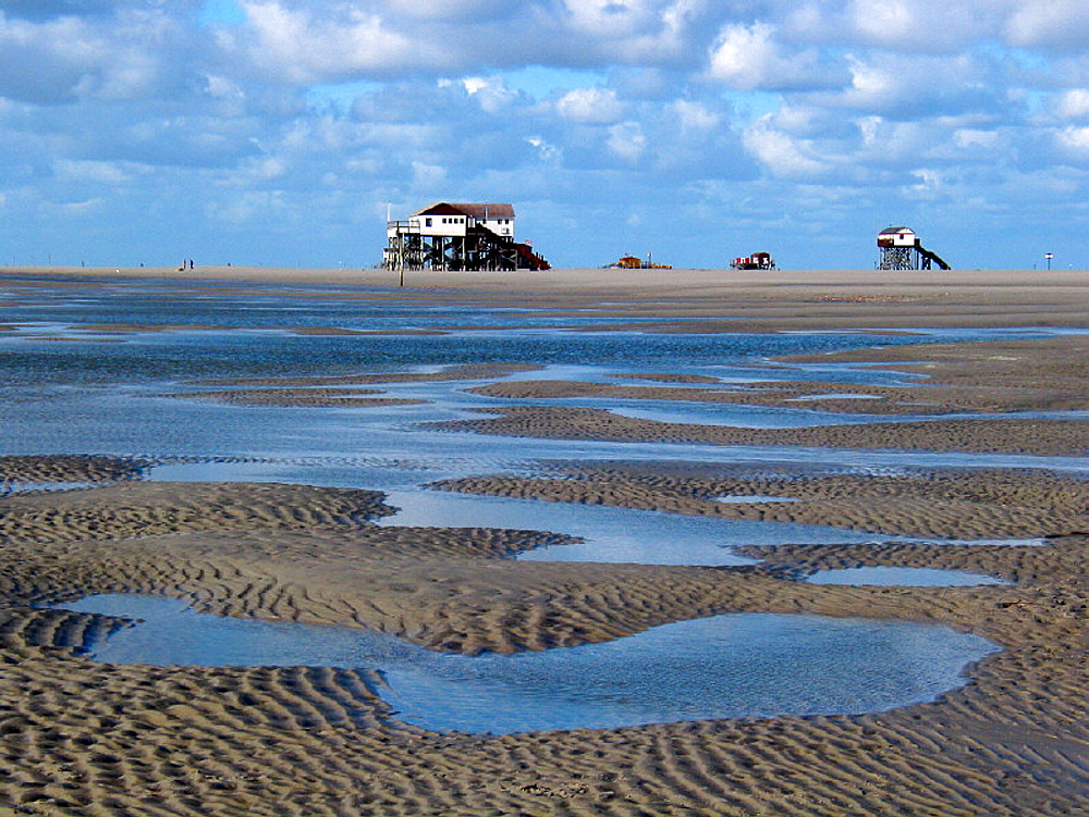 beach, building on stilts, clouds, coast, ebb, tide, flood, Germany, Europe, home, house, low, mud flats, North Fris. beach, building on stilts, clouds, coast, ebb, tide, flood, Germany, Europe, home, house, low, mud flats, North Fris