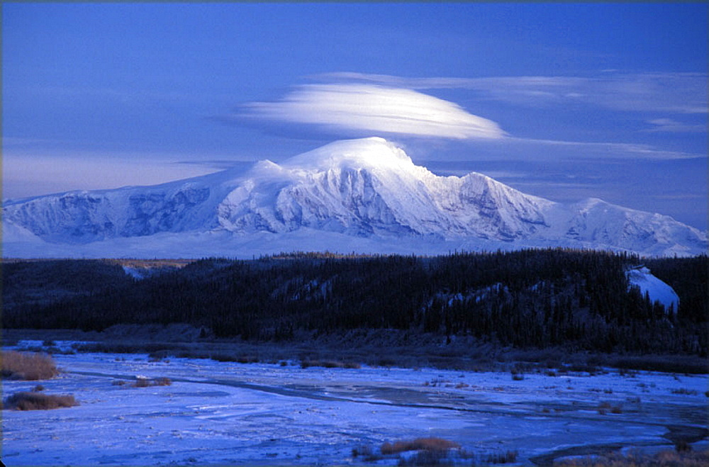 scenery, landscape, winter, Mount McKinley, mountain, wood, snow, dusk, twilight, USA, America, United States, North A. scenery, landscape, winter, Mount McKinley, mountain, wood, snow, dusk, twilight, USA, America, United States, North A - 817-295938