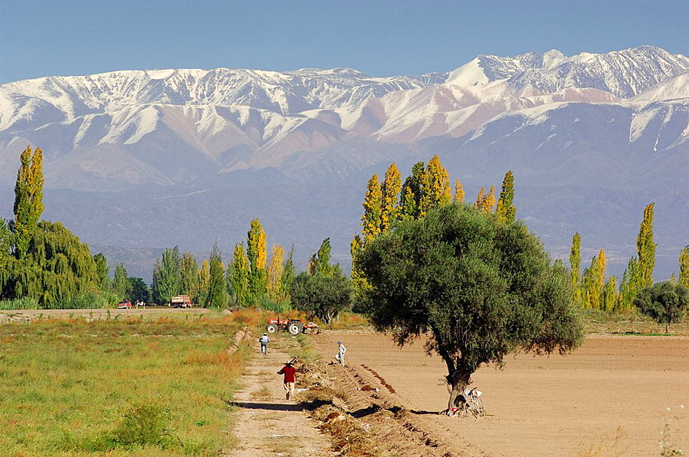 High Quality Stock Photos Of Andes Mountains - Where are the andes mountains