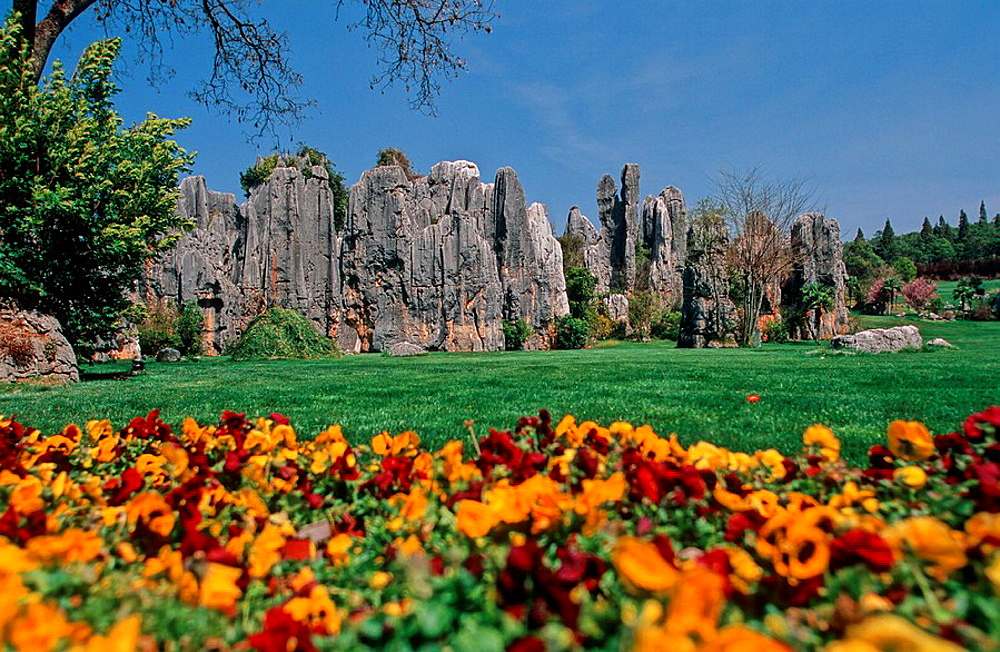 China, Asia, Xiao Shilin, Stone Forest, Kunming, Yunnan Province, landscape, karst formations, erosion, rock, rocky, A. China, Asia, Xiao Shilin, Stone Forest, Kunming, Yunnan Province, landscape, karst formations, erosion, rock, rocky, A