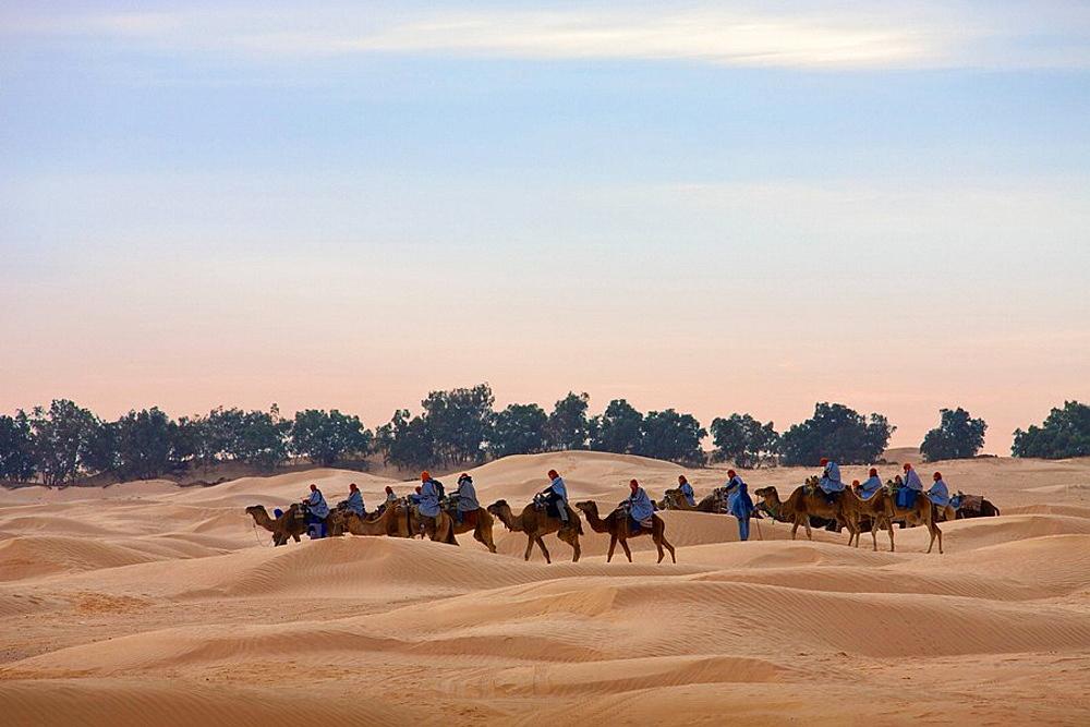 10854872, Tunisia, Africa, North Africa, Arabian, . 10854872, Tunisia, Africa, North Africa, Arabian,  - 817-303506