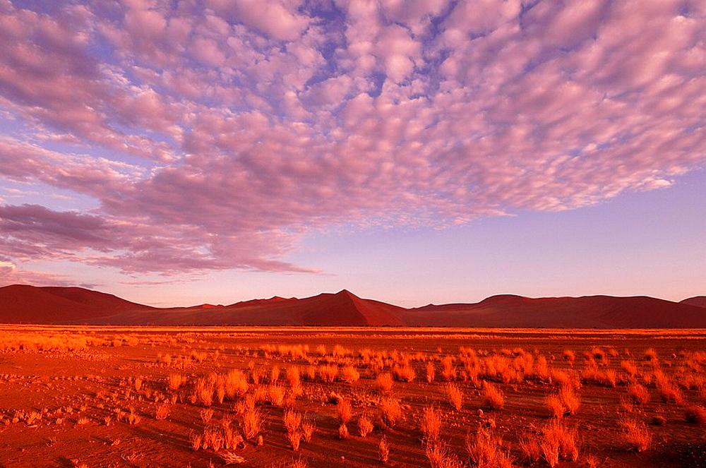 Sand Dunes, Sossusvlei area, Namib Naukluft, National Park, Hardap Region, Namibia, Africa, Travel, Nature. Sand Dunes, Sossusvlei area, Namib Naukluft, National Park, Hardap Region, Namibia, Africa, Travel, Nature