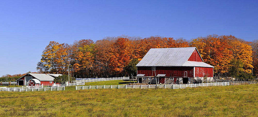 Gordons Farm buildings and fence in autumn, Manitoulin Island, Ontario