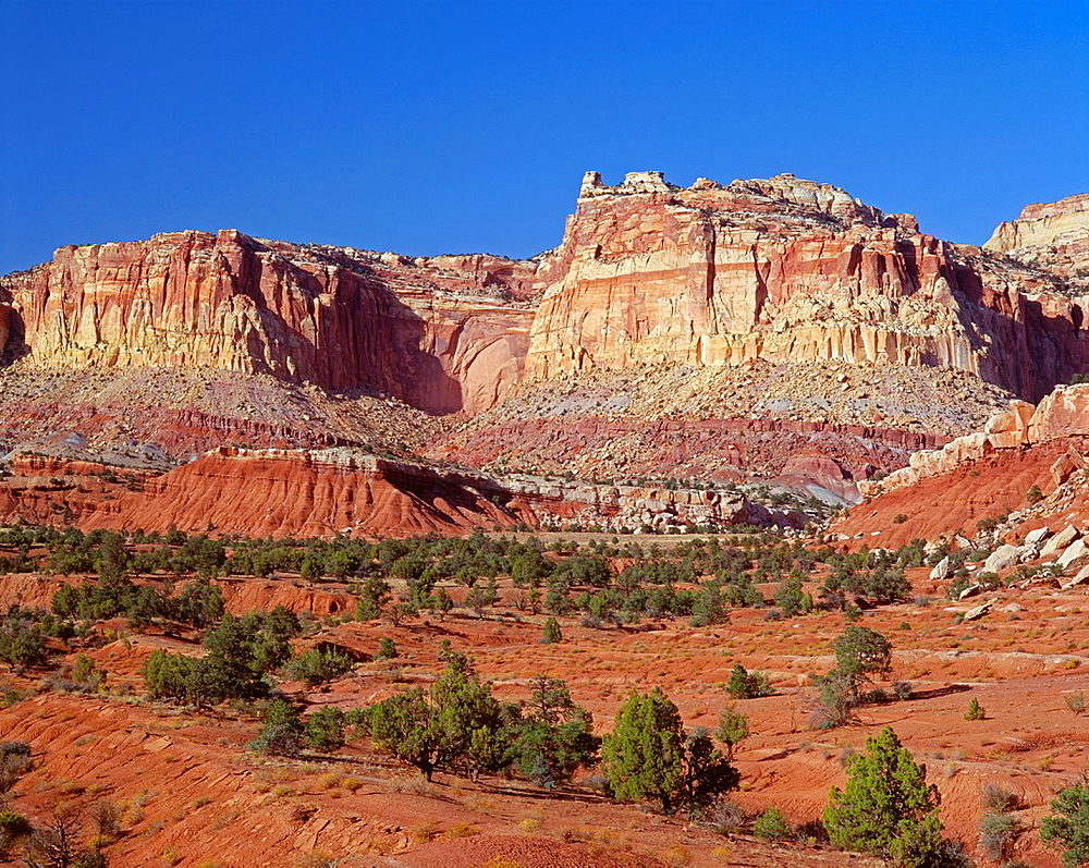 Broken cliffs form rugged western face of the Waterpocket Fold, Capitol Reef National Park, Utah, USA