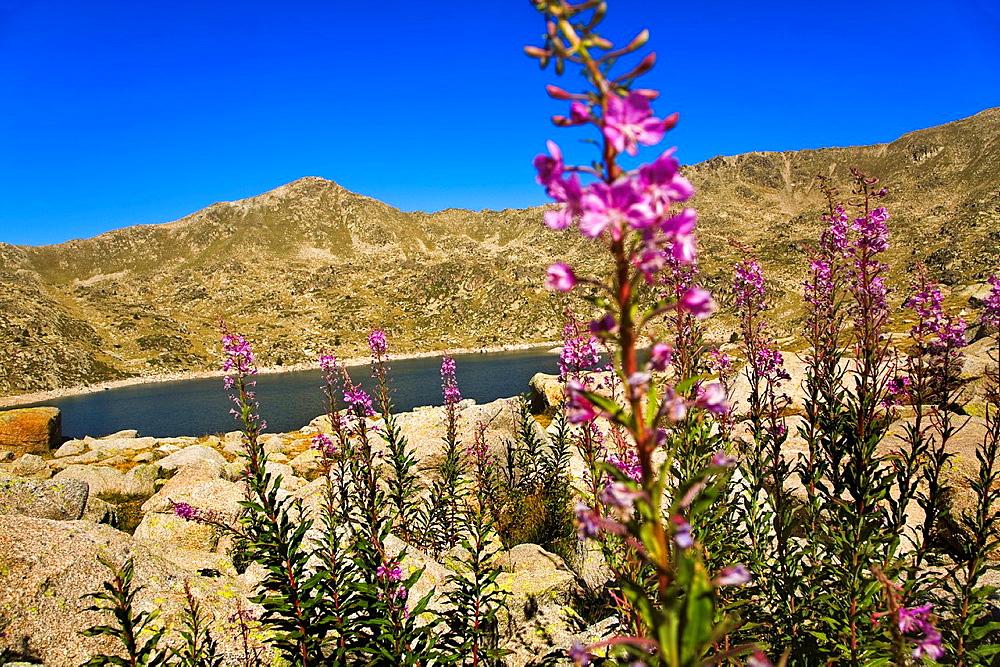 Estany de la Illa' La Illa Lake, Madriu Valley, Andorra