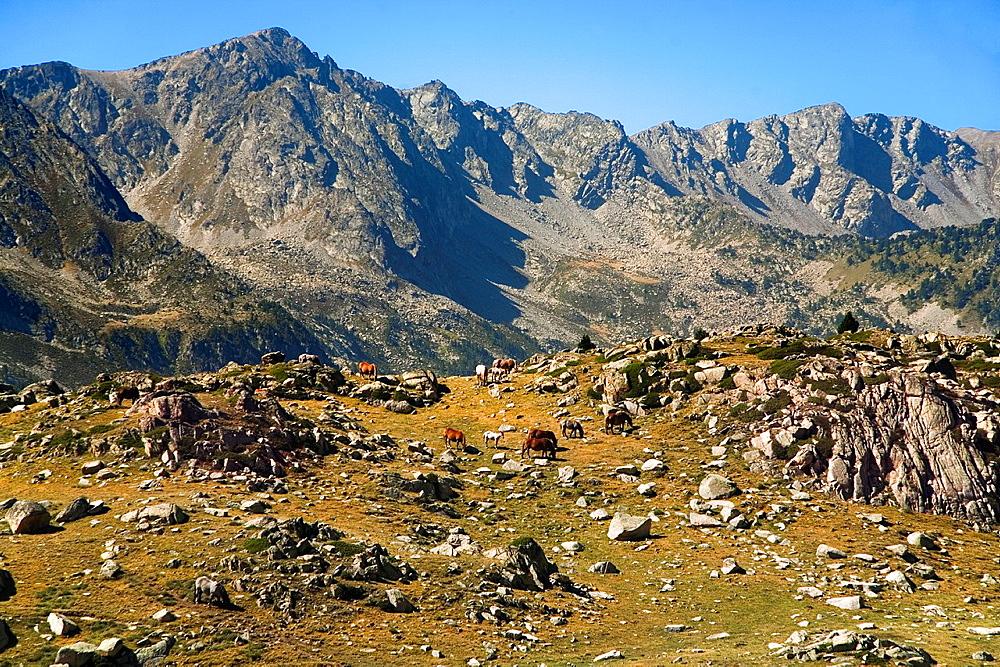 Madriu Valley from La Illa Lake ' Estany de la Illa '. Andorra.