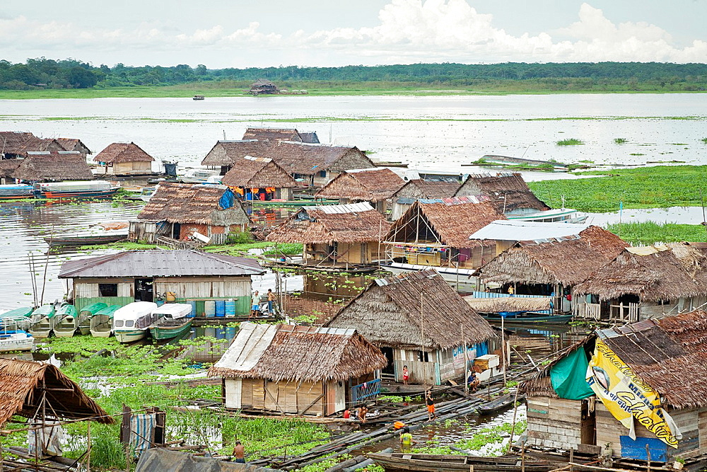 Floating houses on the banks of Rio Itayla, Iquitos, Loreto, Peru - 817-317638
