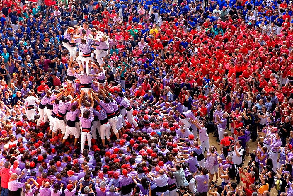 Colla Jove Xiquets de Tarragona 'Castellers' building human tower, a Catalan tradition Biannual contest bullring Tarragona, Spain